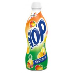 yop 450 grs fruits exotiques yoplait